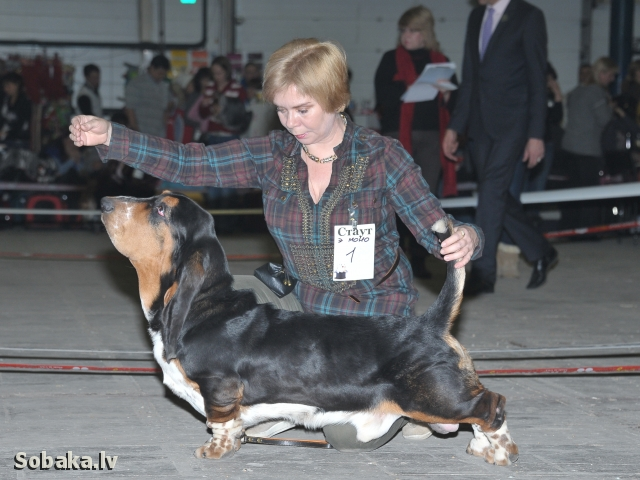 13012013 National Speciality Show Best Junior. 