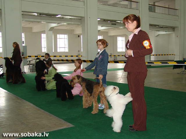 Автор фото - Sobaka.lv 